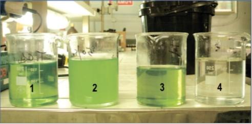 Рис. 8. Результат очистки дизельной эмульсии в лаборатории компании Green Chemicals: 1 – дизельное топливо «стандарт»; 2 – эмульсия (вода – 43%, дизельное топливо – 57%); 3 – очищенное дизельное топливо (содержание воды – 0,05%); 4 – вода отделенная от дизельного топлива