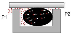 Рис. 1. Схема проникновения газов через фторкаучуковое О-кольцо