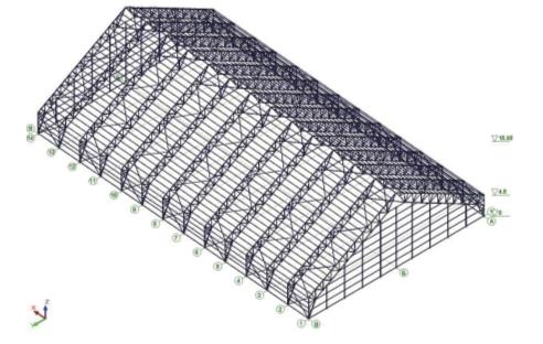 Рис. 1. Общий вид пространственной рамы каркаса крытого хоккейного корта