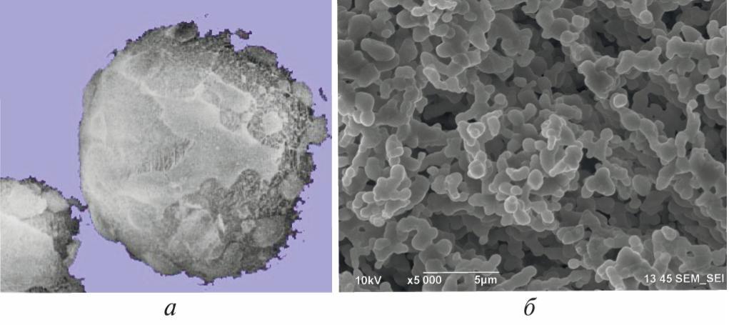 Рис.1. Морфология сублимированных криогранул нитрата натрия: а – общий вид; б – структура гранул