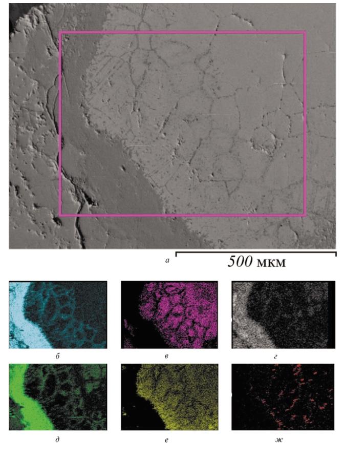 Рис. 2. Результаты электронно-зондового микроанализа коррозионно-стойкой стали: а– структура металла (внутренний слой); б – содержание кислорода; в – содержание железа; г – содержание марганца; д – содержание хрома; е – содержание никеля; ж – содержание титана