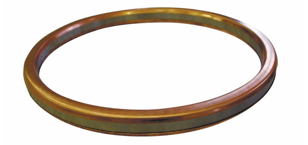 Рис. 4. Фланцевая прокладка для соединений RTJ-типа с пластичными металлическими накладками
