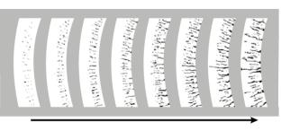 Рис. 1. Стадии развития ползучести  по толщине стенки реакционной трубы