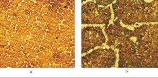 Рис. 5. Результаты полевой металлографии (срок эксплуатации реакционной трубы – 10 лет): а – просматривается типичная микроструктура центробежно-литой трубы; б – видны признаки интенсивного выпадения и коагуляции вторичных карбидов по телу и границам зерен
