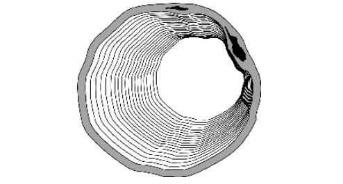 Рис. 8. Образование пустот и отдуллин в стенах печной трубы вследствиие увеличения давления азота, накопленого в толще металла, при повышении температуры