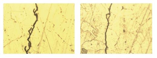Рис. 8. Фотографии микроструктуры поверхности шлифа. x500