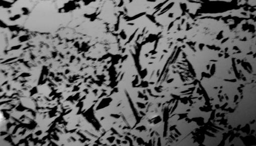 Рис. 10. Структура стали 15ХМ под воздействием водорода (давление – 2 МПа, время воздействия – 2 500 ч)
