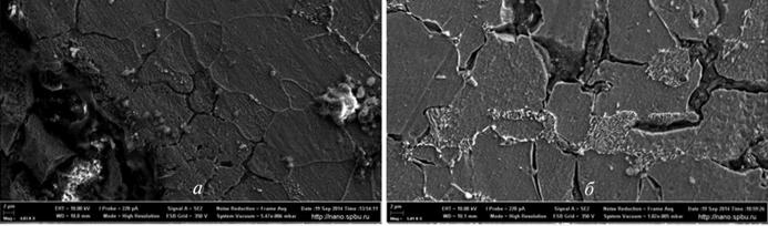 Рис. 9. Структура металла перегретого участка коллектора со стороны внутренней поверхности по данным растровой электронной микроскопии: а – x4000; б – x8000