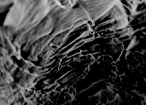 Рис. 13. Фрактография излома стали 15ХМ под воздействием водорода (давление – 10МПа, время воздействия 2 500 ч)