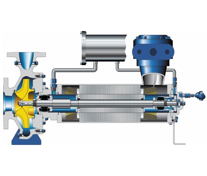 Конструкция насоса Ecochem в специальном исполнении для сжиженных газов (тип HP)